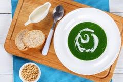Κρύα θερινή υγιής σούπα του σπανακιού Στοκ Εικόνες
