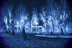 Κρύα μπλε νύχτα Χριστουγέννων Στοκ φωτογραφία με δικαίωμα ελεύθερης χρήσης