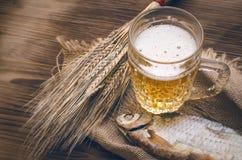 Κρύα μπύρα αφρού Στοκ εικόνα με δικαίωμα ελεύθερης χρήσης