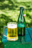 Κρύα μπύρα στον κήπο Στοκ εικόνα με δικαίωμα ελεύθερης χρήσης