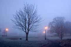 Κρύα & παγωμένα ομιχλώδη ξημερώματα στο πάρκο Diss Στοκ Εικόνες