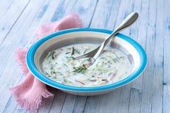 Κρύα σούπα αγγουριών με το ραδίκι και το γιαούρτι Στοκ Φωτογραφία