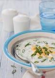 κρύα σούπα αγγουριών Στοκ Φωτογραφία