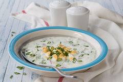 κρύα σούπα αγγουριών Στοκ φωτογραφία με δικαίωμα ελεύθερης χρήσης