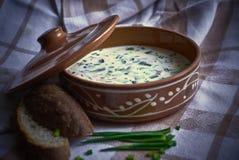 Κρύα σούπα με τα πράσινα κρεμμύδια και το ψωμί Στοκ εικόνα με δικαίωμα ελεύθερης χρήσης