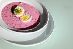 Κρύα σούπα παντζαριών Στοκ εικόνες με δικαίωμα ελεύθερης χρήσης