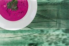 Κρύα σούπα των τεύτλων και των λαχανικών με τα πράσινα σε ένα πράσινο ξ στοκ εικόνες με δικαίωμα ελεύθερης χρήσης