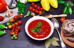 Κρύα σούπα Gazpacho Στοκ Εικόνες