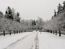 Κρύοι χρόνοι Στοκ φωτογραφία με δικαίωμα ελεύθερης χρήσης