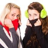 κρύος ερχόμενος χειμώνας Στοκ Εικόνα