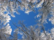κρύος καιρός Στοκ φωτογραφία με δικαίωμα ελεύθερης χρήσης
