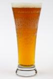 κρύος πάγος μπύρας Στοκ Φωτογραφίες