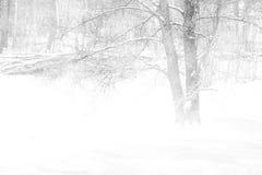 κρύος χειμώνας τοπίων Στοκ φωτογραφία με δικαίωμα ελεύθερης χρήσης