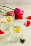 Κρύος χυμός φρούτων με το πορτοκάλι μεντών και λεμονιών με μια ανθοδέσμη του ΛΦ Στοκ Φωτογραφία