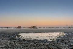 Κρύο έλος στοκ φωτογραφίες