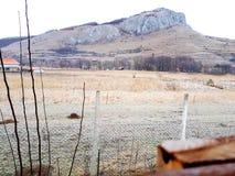 κρύο δασικό σπίτι βουνών φύσης στοκ εικόνες