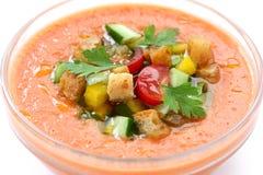 κρύο ισπανικό λαχανικό sou gazpacho Στοκ φωτογραφία με δικαίωμα ελεύθερης χρήσης