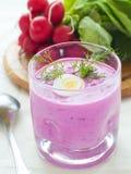 κρύο λαχανικό σούπας στοκ εικόνα με δικαίωμα ελεύθερης χρήσης