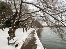 κρύο λεκανών παλιρροιακό Στοκ Εικόνες