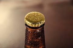 Κρύο μπουκάλι μπύρας Φρέσκια έννοια μπουκαλιών μπύρας Στοκ Φωτογραφίες