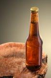 Κρύο μπουκάλι μπύρας Στοκ Φωτογραφία