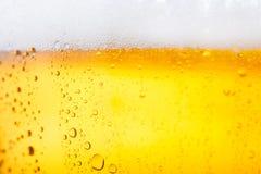 κρύο μπύρας στοκ εικόνες