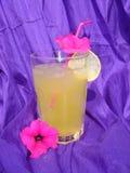 κρύο ποτό Στοκ Εικόνες