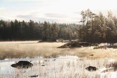 Κρύο τοπίο Στοκ φωτογραφία με δικαίωμα ελεύθερης χρήσης