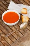 Κρύο gazpacho Στοκ φωτογραφία με δικαίωμα ελεύθερης χρήσης