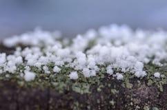 Κρύσταλλα του χιονιού σε ένα μπλε θολωμένο υπόβαθρο Snowflakes κλείνουν Στοκ Φωτογραφίες
