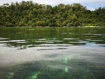 Κρύσταλλο - καθαρίστε το νερό με τις υγιείς κοραλλιογενείς υφάλους υποθαλάσσιες από την επιφάνεια του νησιού Gaya, πάρκο Tunku Ab στοκ φωτογραφία με δικαίωμα ελεύθερης χρήσης