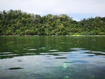 Κρύσταλλο - καθαρίστε το νερό με τις υγιείς κοραλλιογενείς υφάλους υποθαλάσσιες από την επιφάνεια του νησιού Gaya, πάρκο Tunku Ab στοκ φωτογραφία
