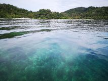 Κρύσταλλο - καθαρίστε το νερό με τις υγιείς κοραλλιογενείς υφάλους υποθαλάσσιες από την επιφάνεια του νησιού Gaya, πάρκο Tunku Ab στοκ εικόνα