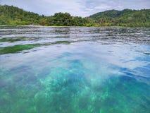 Κρύσταλλο - καθαρίστε το νερό με τις υγιείς κοραλλιογενείς υφάλους υποθαλάσσιες από την επιφάνεια του νησιού Gaya, πάρκο Tunku Ab στοκ εικόνες με δικαίωμα ελεύθερης χρήσης