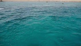 Κρύσταλλο - σαφή βαθιά νερά της Ερυθράς Θάλασσας και η εγκαταλειμμένη ακτή του νησιού πανόραμα απόθεμα βίντεο