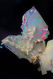 Κρύσταλλα αργιλίου καλίου στοκ φωτογραφία