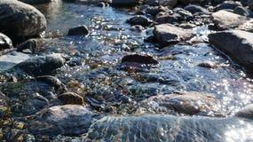 Κρύσταλλο - καθαρίστε το νερό του μικρού ρυακιού στη στέπα Altai Στοκ φωτογραφία με δικαίωμα ελεύθερης χρήσης