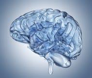 Κρύσταλλο - σαφές μυαλό Στοκ Εικόνα