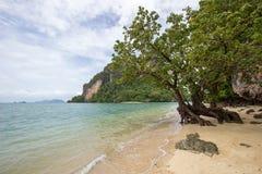 Κρύσταλλο - σαφής ευχάριστης και σκιερής ατμόσφαιρα θαλάσσιου νερού, στο νησί Phak Bia, περιοχή AO Luek, Krabi, Ταϊλάνδη Στοκ εικόνες με δικαίωμα ελεύθερης χρήσης