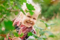 Κρύψιμο μικρών κοριτσιών πίσω από το φύλλωμα Στοκ εικόνες με δικαίωμα ελεύθερης χρήσης