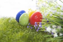 κρύψιμο χλόης αυγών Πάσχας Στοκ φωτογραφία με δικαίωμα ελεύθερης χρήσης