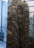 Κτήρια και αντανακλάσεις δέντρων στους τοίχους γυαλιού στην οδό Burrard Στοκ φωτογραφίες με δικαίωμα ελεύθερης χρήσης