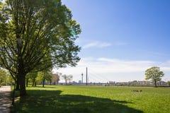 Κτήρια στον περίπατο του Ρήνου του Ντίσελντορφ Στοκ Εικόνες