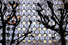 Κτήριο αμυντικών γραφείων Λα και δέντρα πρόσοψη χειμερινού στην αφηρημένη γυαλιού Στοκ Εικόνες