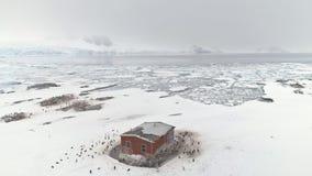 Κτήριο σταθμών της Ανταρκτικής που περιβάλλεται από τα penguins απόθεμα βίντεο