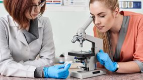 Κτηνίατροι με το μικροσκόπιο στο εργαστήριο στοκ φωτογραφία