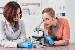 Κτηνίατροι με το μικροσκόπιο στο εργαστήριο στοκ φωτογραφία με δικαίωμα ελεύθερης χρήσης
