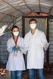 Κτηνίατροι στα άσπρα παλτά που φέρνουν το κοτόπουλο Στοκ φωτογραφία με δικαίωμα ελεύθερης χρήσης
