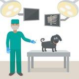 Κτηνίατρος με ένα σκυλί σε ένα ιατρικό γραφείο Εμβολιασμός για τα σκυλιά απεικόνιση αποθεμάτων