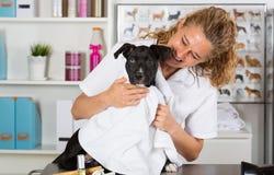 Κτηνίατρος με το σκυλί του αμερικανικό Staffordshire Στοκ φωτογραφία με δικαίωμα ελεύθερης χρήσης